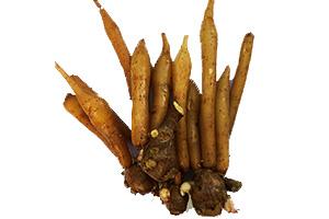 Boesenbergia rotunda root extract